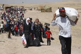Blog, syrian refugees image 2